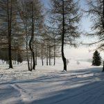 Yogaleicht_Winterreise_Schnee_Erzgebirge